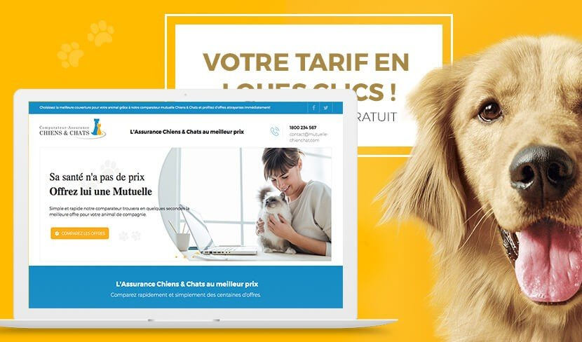 mutuelle chienchat 1 3 Groupe Sodedif